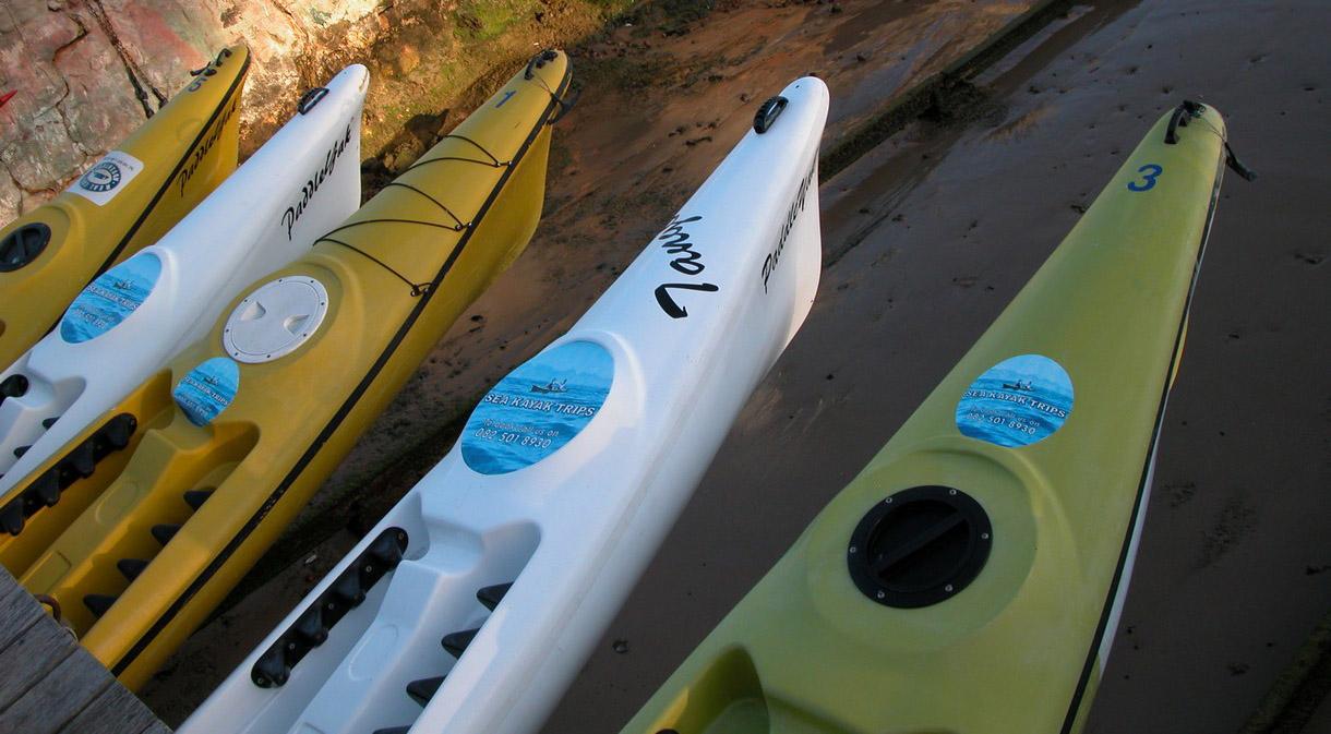 Kayaking in Simonstown